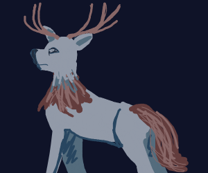 Deer with a long tail and a collar