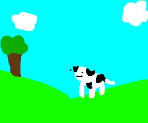 a cow enjoying outside