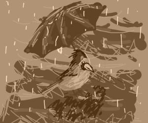 Bird with an umbrella