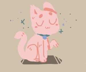 Pink UwU kitty