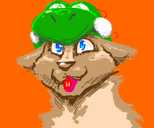 dog with a yoshi hat