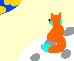 Foxxx on the mooooon