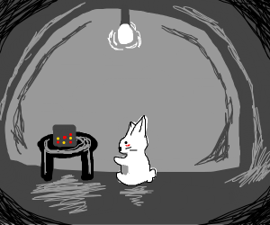 playing connect four alone as a rabbit