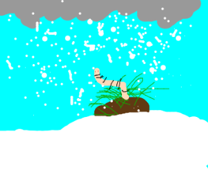 Worm in a Blizzard