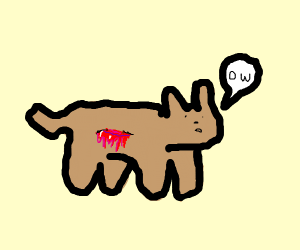 """""""ow"""" says the brown cat who was stabbed."""