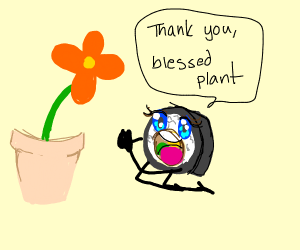 sushi praying to a potted plant