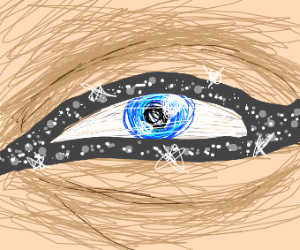 Eye with sparkling winged eyeliner applied.