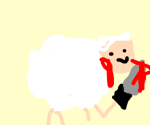 sheep fillicide