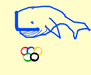 Whales compete in Whalympics.