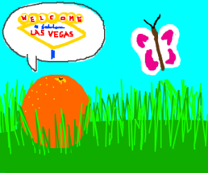 "Orange says ""Las Vegas"" to a butterfly."