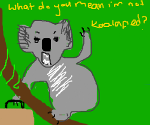 koala with briefcase is outraged
