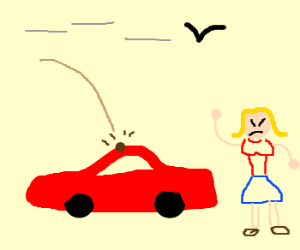 Woman angry with bird for pooping on car