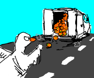 Determined duck chases a van for oranges