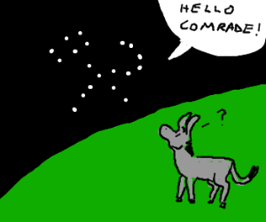 Russian constellation chats to donkey
