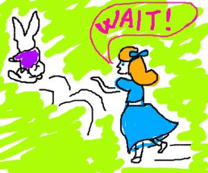 Alice chases the White Rabbit.