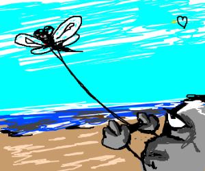dragonflykite on beach steered by stone