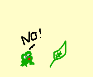 frog no want leaf