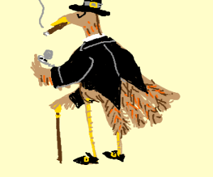 Gentlemanne Turkey Pilgrim
