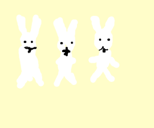 three white bunnies