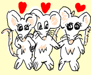 3 mice in love