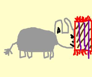 Cigar smoking elephant head on a rug.