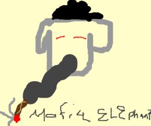 elephant does a mafia hit