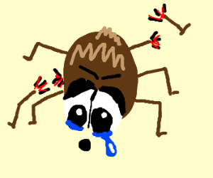 Spider with 5 and a half legs