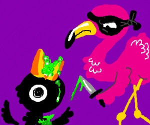 Flamingo tries to stab acid filled crow