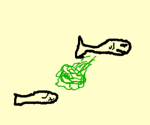 fish farts