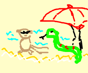 snake and mole chilling at white beach