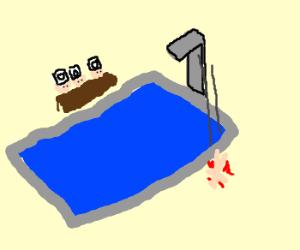 misjuged dive