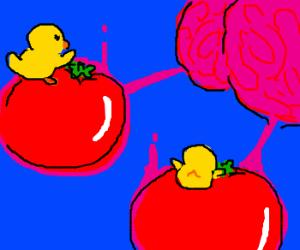 Ducks on tomatoes having a war on brains
