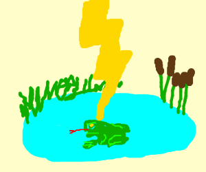 Frog in pond hit by lightning