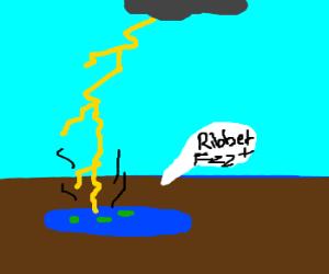 lightning hits frogs