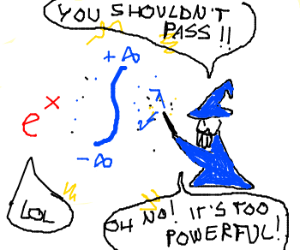 Math wizard integrates a function