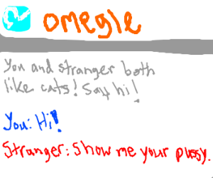 typical omegle creep