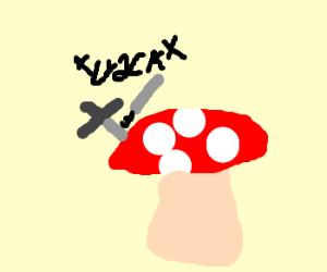 double-edged sword breaks on toadstool
