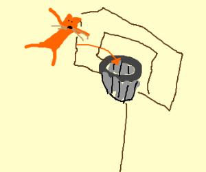 Slam-dunking a kitten