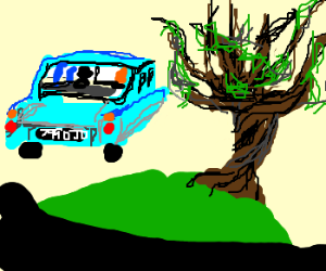 flying the Ford into the Whomping Willow