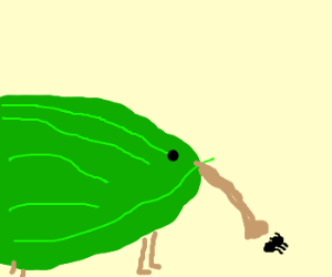 Watermelonarmadillo is eating an ant