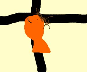 Crucified Starfish