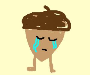 Mourning Acorn