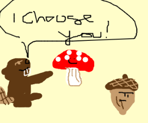 Beaver Chooses Mushroom Over Acorn!