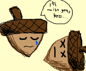 acorn mourns his dead brother