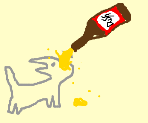 A cat drinking beer