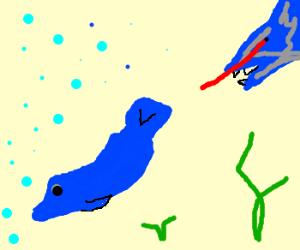 Dolphin flees from Laser-Shark