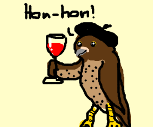 A French Falcon drinks wine.
