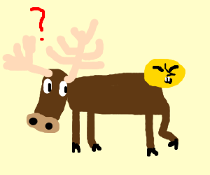 moose with disagreeing human head on rear end
