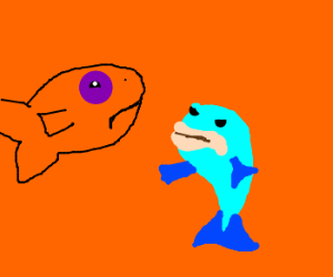 Goldfish punched in eye by mackerel