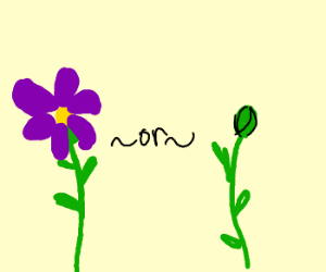 To flower or not to flower